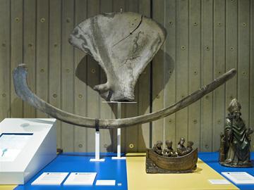 © MAS (Antwerpen) - foto : Musea en Erfgoed, Antwerpen - Michel Wuyts